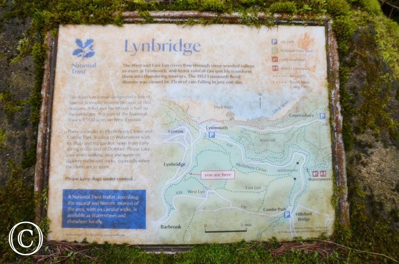 Lynbridge - View 2