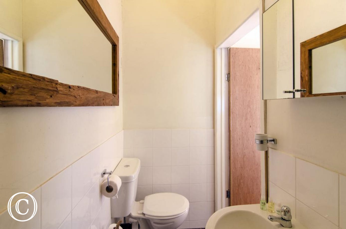 Galmpton Stable shower room toilet