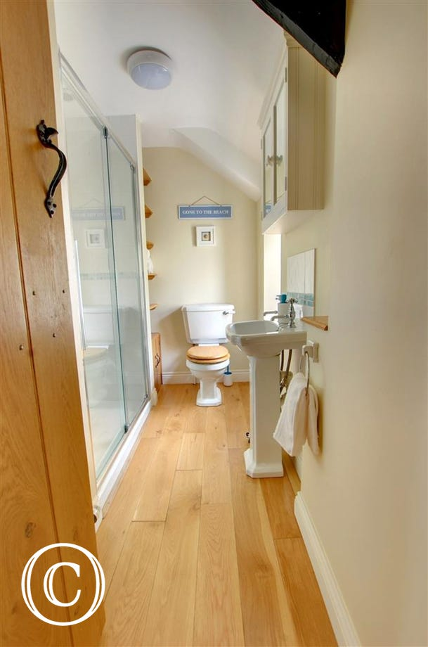 Bathroom with large shower cubical