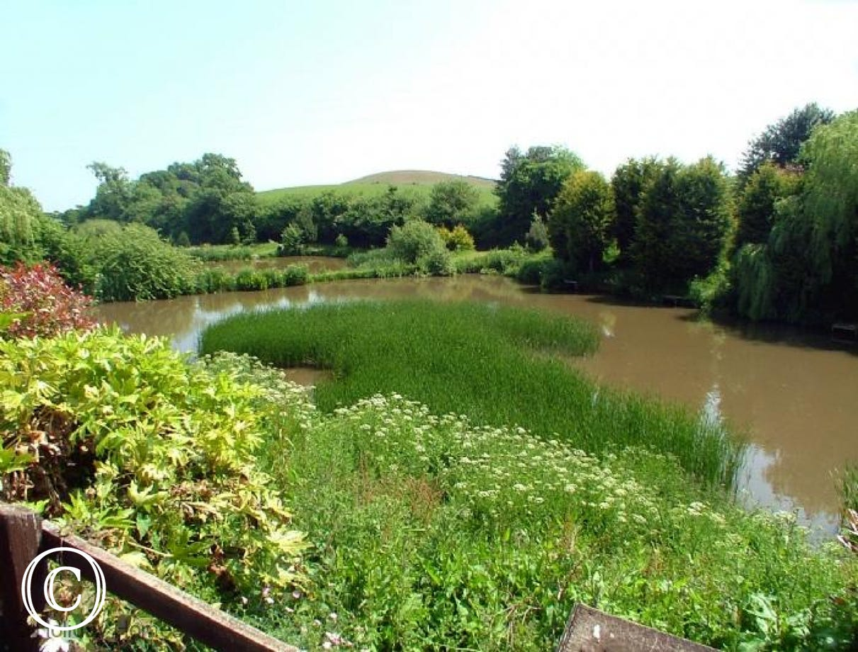 Luccombe Barn Holiday Cottage - View to Fishing Ponds