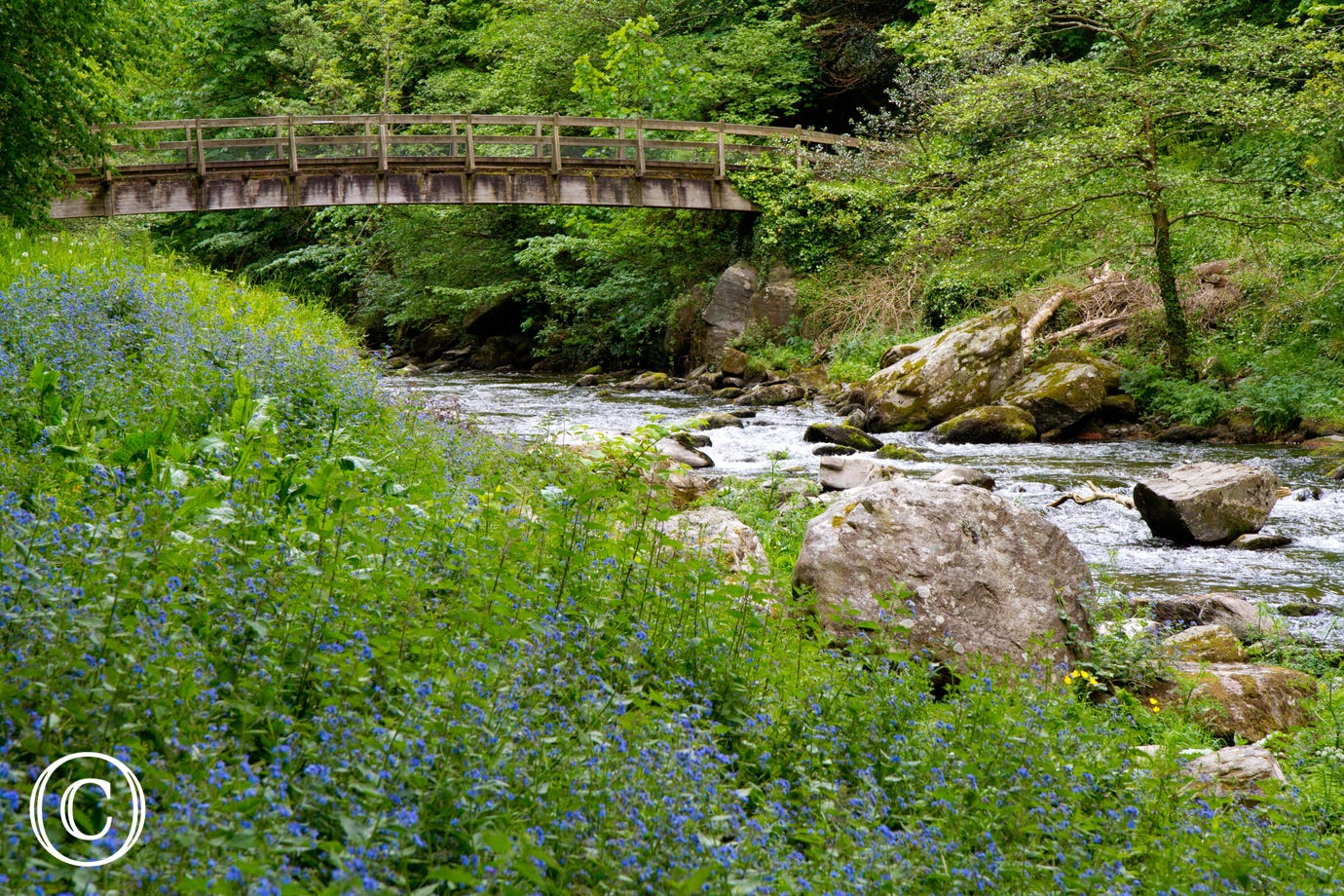 There are beautiful walks around Watersmeet which is a short drive away