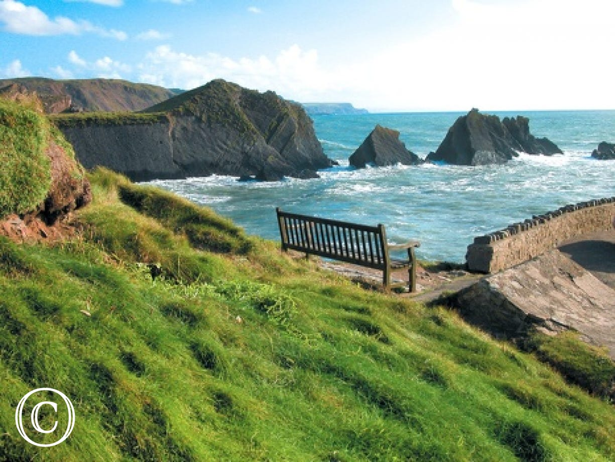 The rugged coastline of Hartland is a short drive away and has some fantastic walks