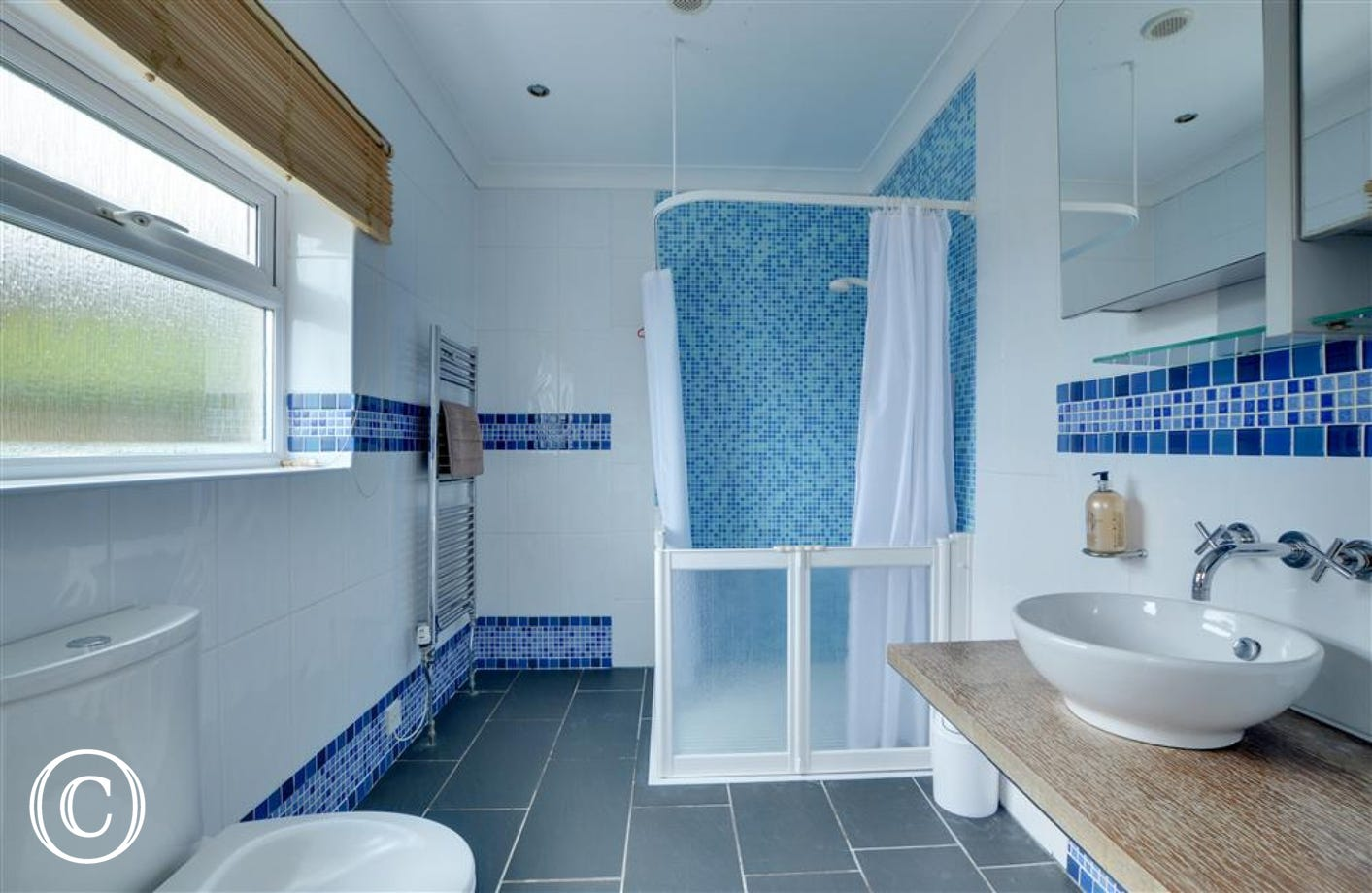 Ensuite shower room with level access shower unit, WC and basin, particularly suitable for less mobile guests