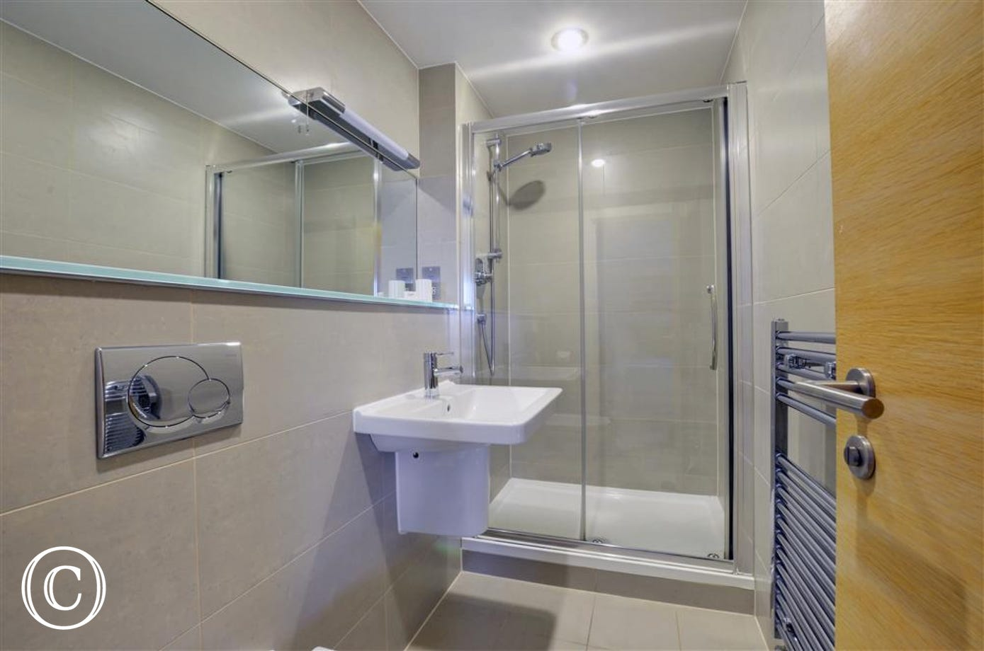 Contemporary style bathroom with large shower and heated towel rail