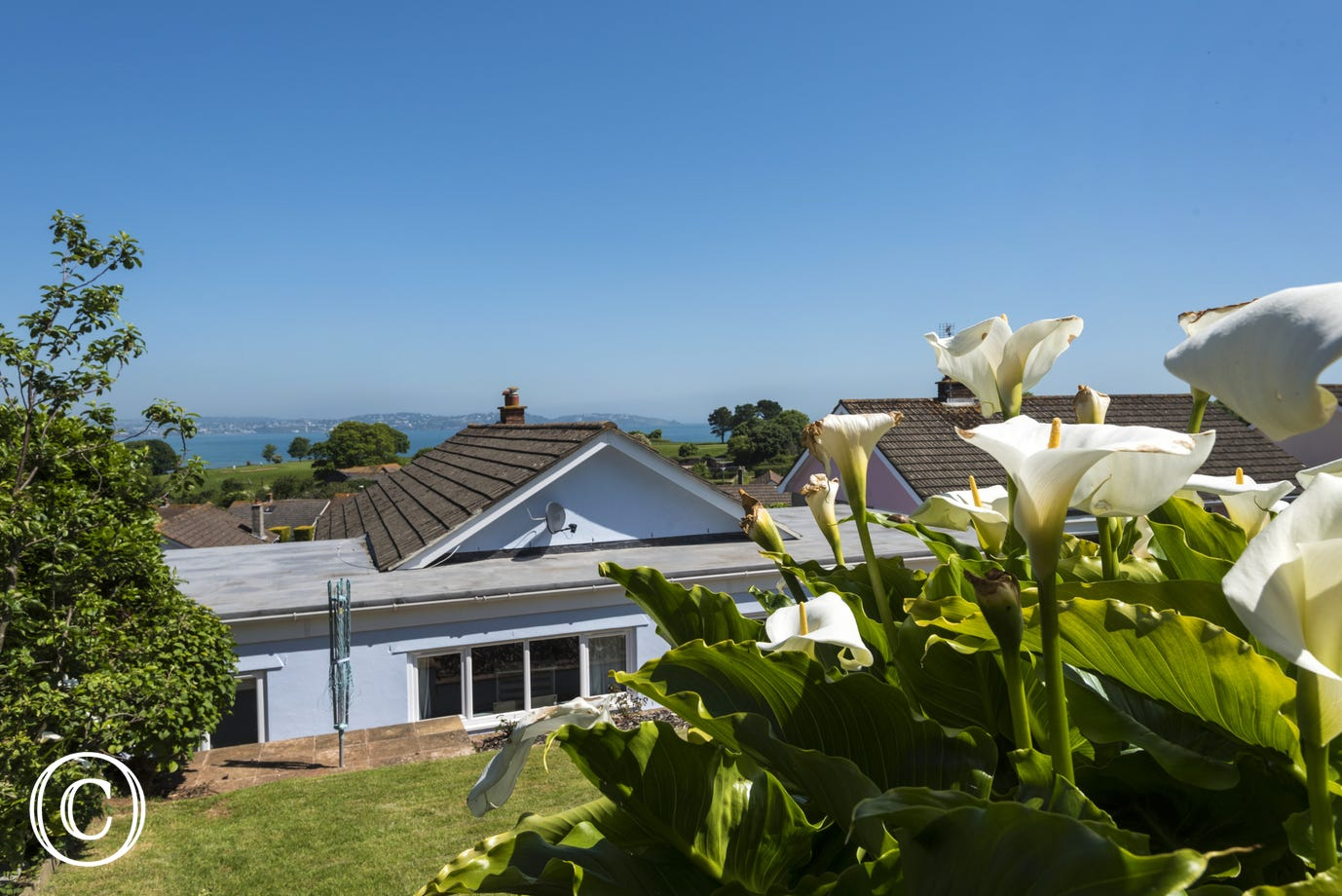 Sea Acres, Paignton - Garden overlooking Torbay