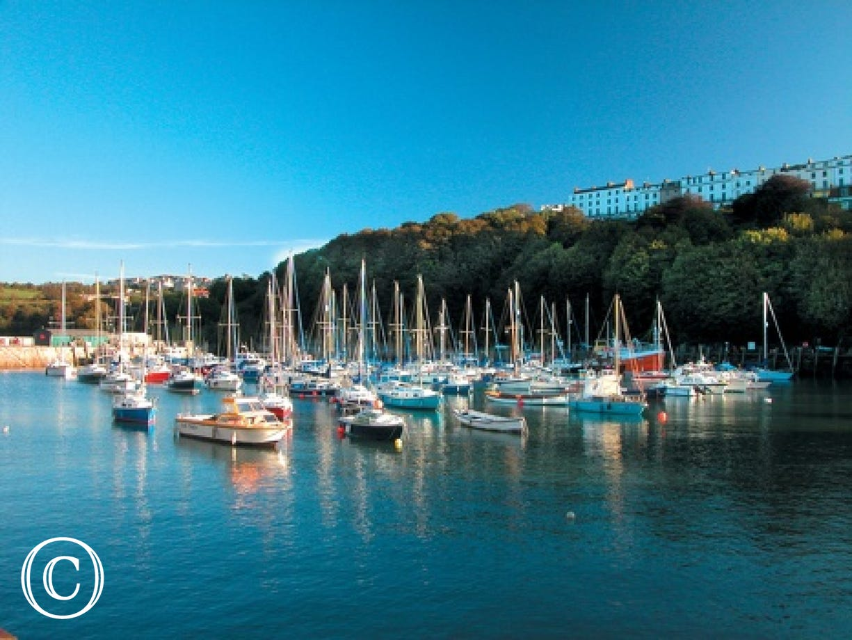 The pretty harbour of Ilfracombe, where you can get boat rides to Lundy Island
