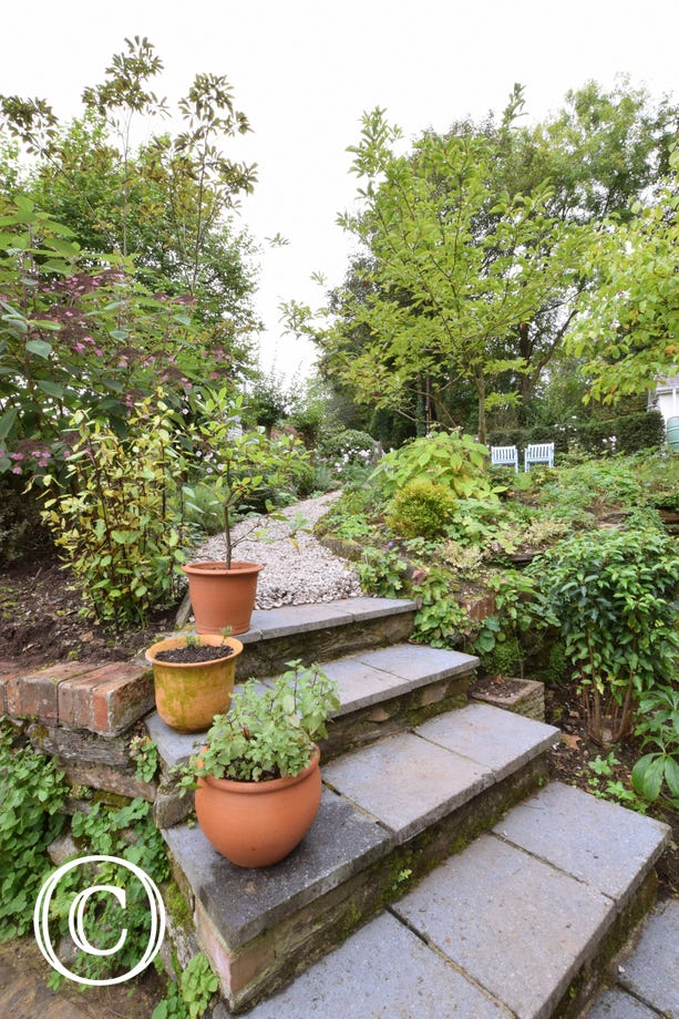Wild Rose Cottage, Asprington - Garden