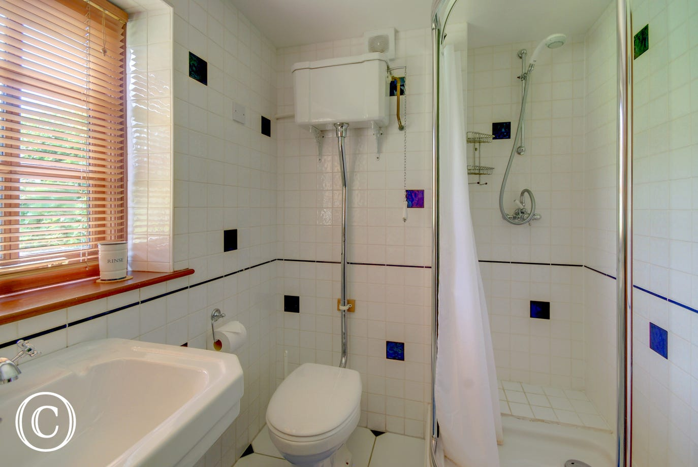 The downstairs shower room