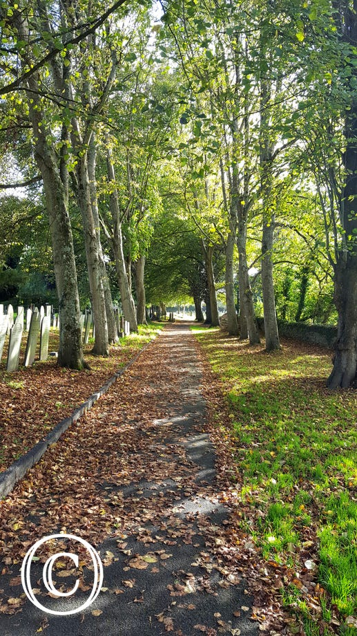 Stretch your legs through the church yard adjacent to the picturesque River Caen