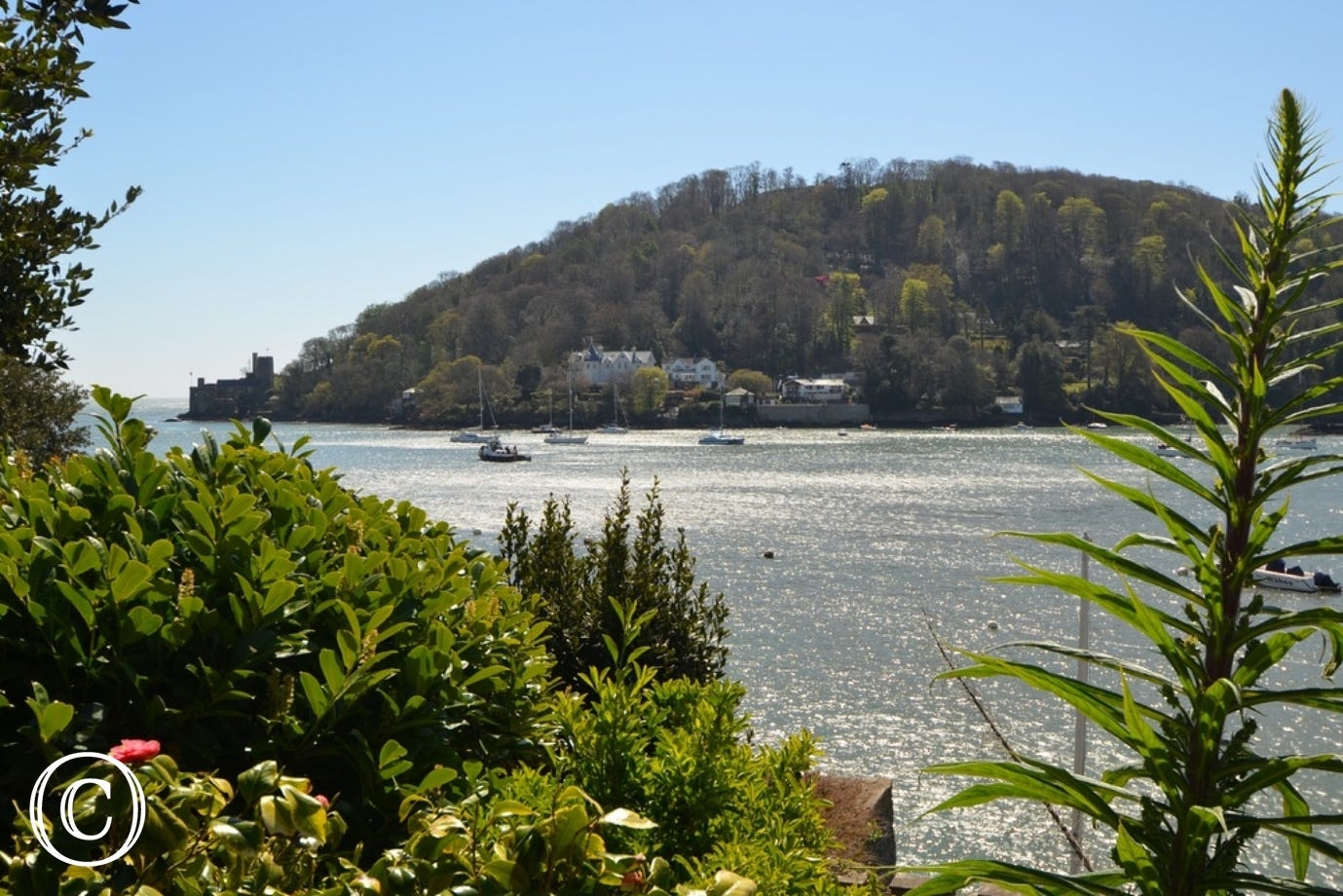 View of the River Dart from The Edge in Kingswear