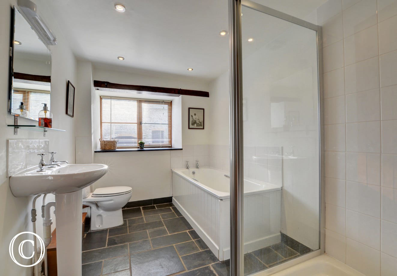 Large modern family bathroom with separate shower