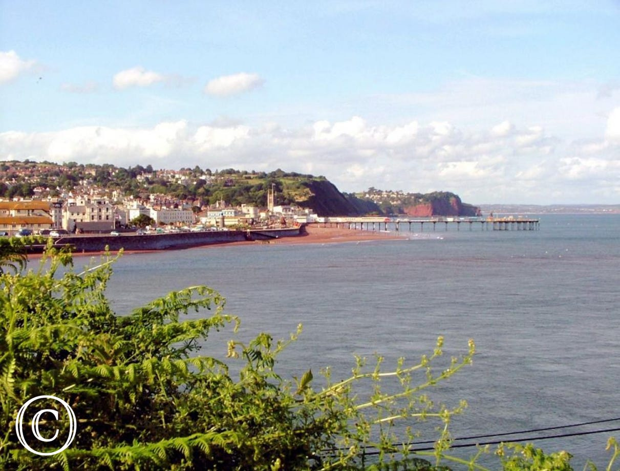 Teignmouth Beach & Pier from The Ness