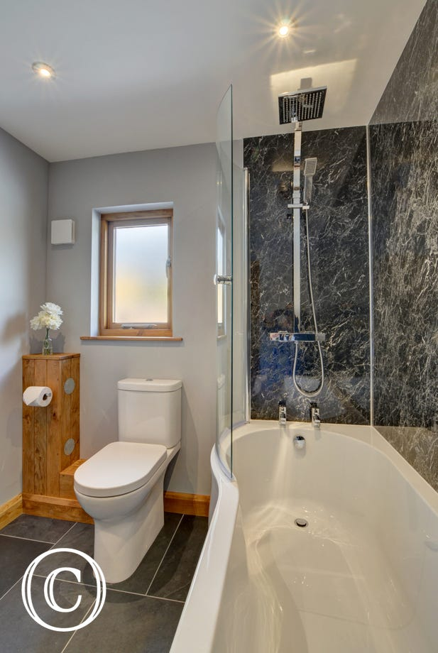 The modern bathroom with shower over bath