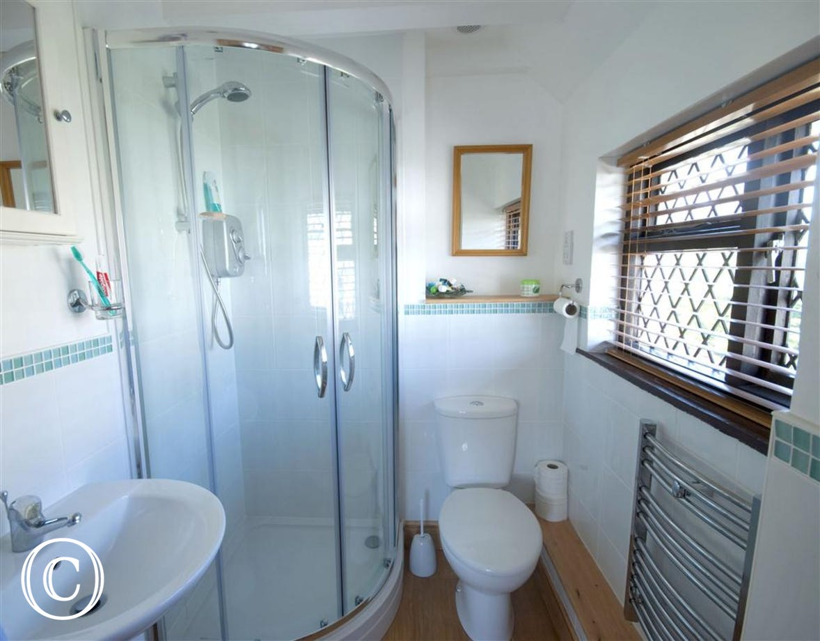 The separate shower room with corner shower cubicle.