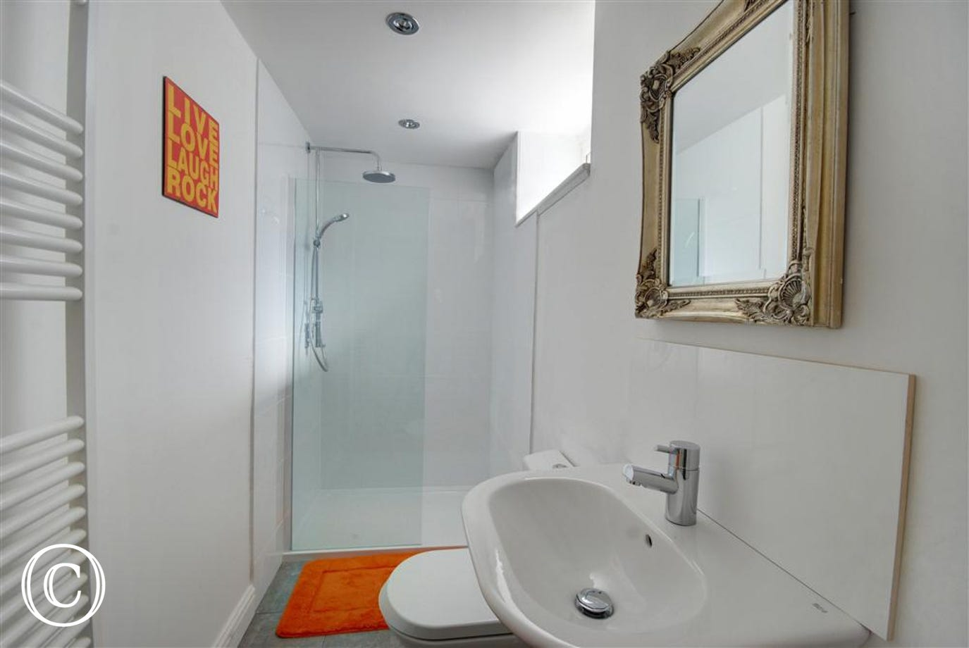 Convenient downstairs shower room has a ''wet room'' feel to it