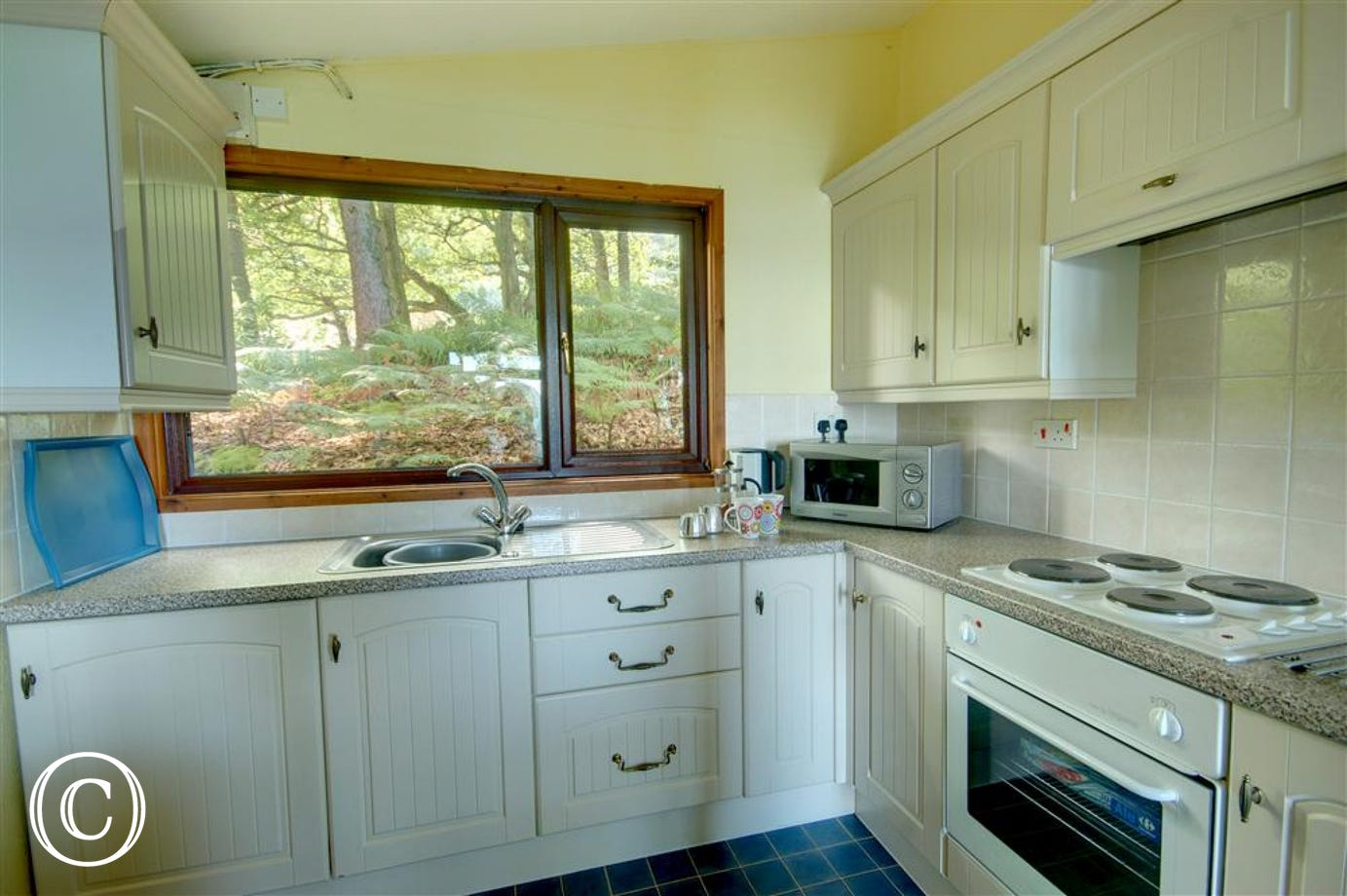 Fully equipped kitchen with picture window looking out to the woods